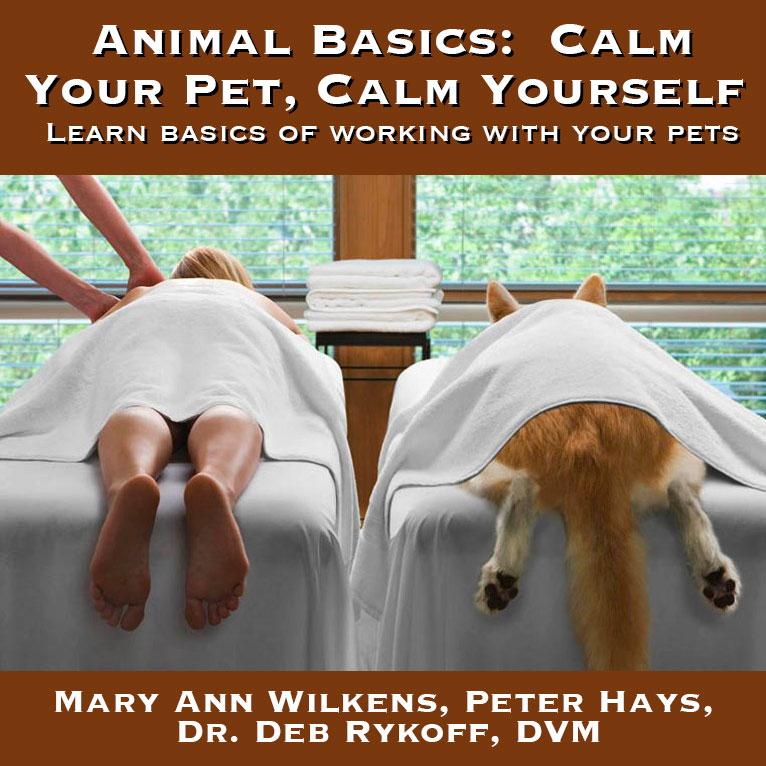 Animal Basics: Calm Your Pet, Calm Yourself